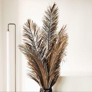 Dried Palm Leaf Decor Bundle